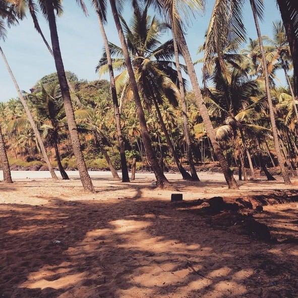 En härlig strand i Indien!