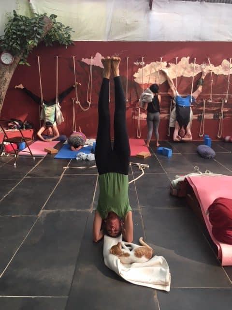 Yogapositionen huvudstående - sirsasana