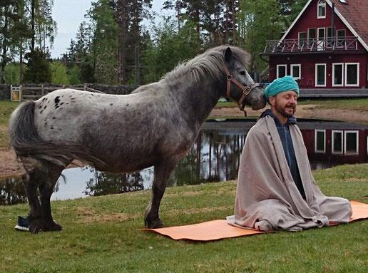 Yogafestival i naturen på Mundekulla
