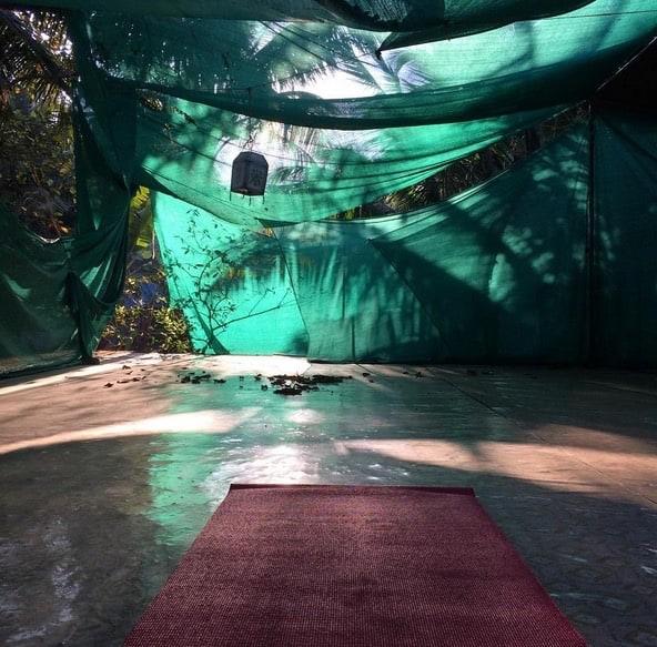 Emmelie på yoga i Indien